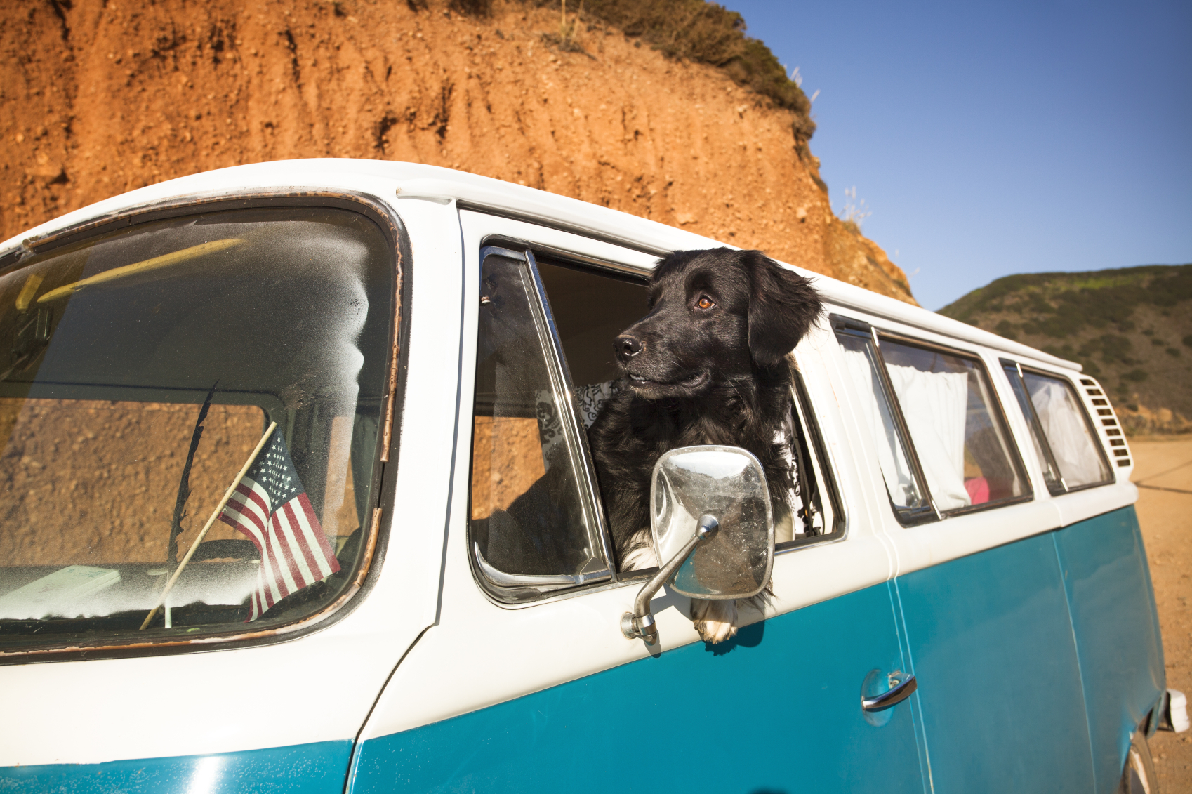 10 Tips for Traveling with Your Dog