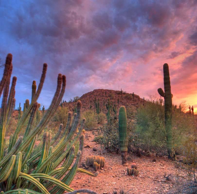 Travel Tuesday City Guide: Phoenix, AZ