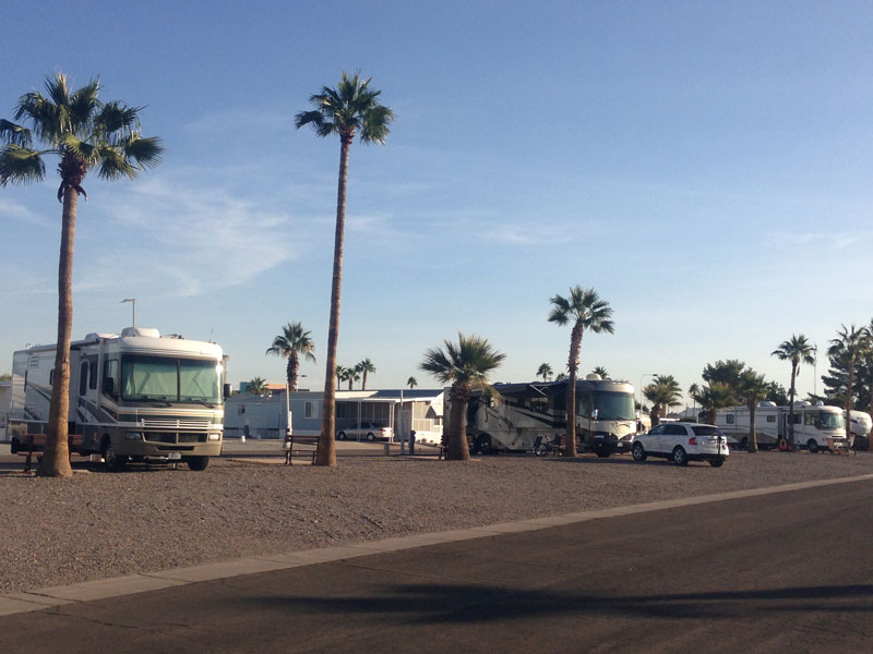 Pull-thru lots at Desert Shadows RV Resort