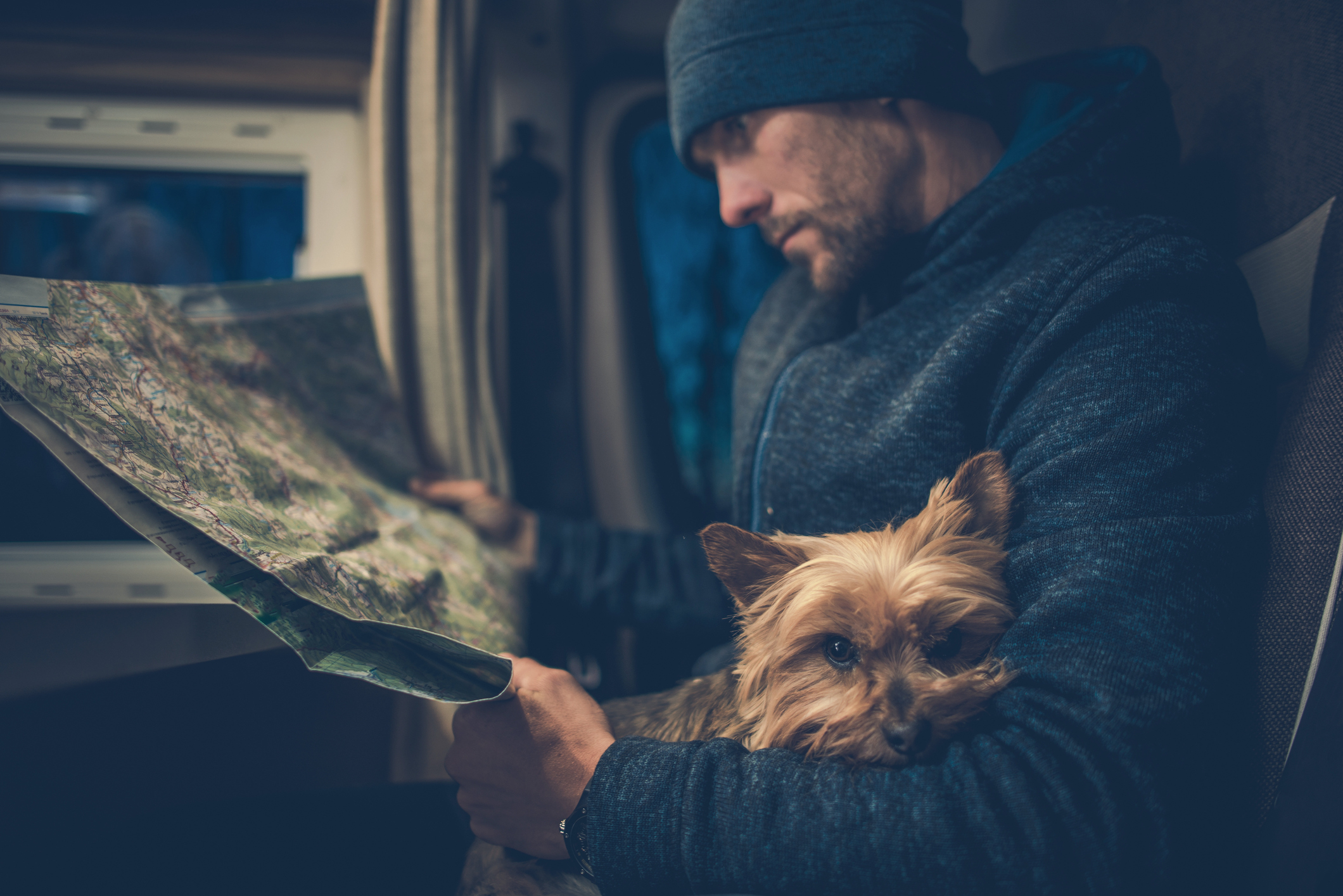 Friday Tips: Pets on the Road