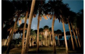 Travel Tuesday Featured Destination: Huntington Beach State Park