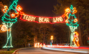 MAGICAL NIGHTS OF LIGHTS Teddy Bear Lane