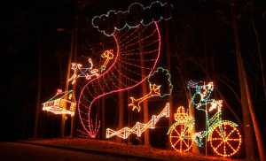 MAGICAL NIGHTS OF LIGHTS Wizard of Oz