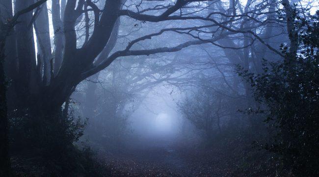mist watch movies
