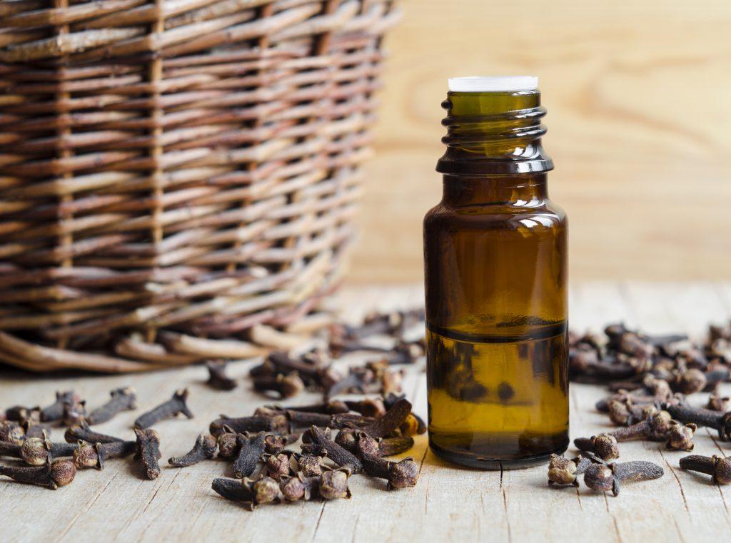 Cloves and clove oil