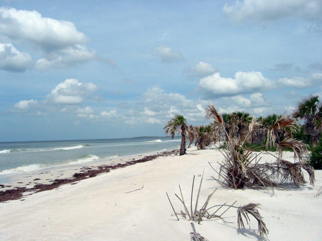 Beach at Caladesi Island