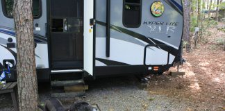 5 Things You Need To Know About Rving With Your Dog