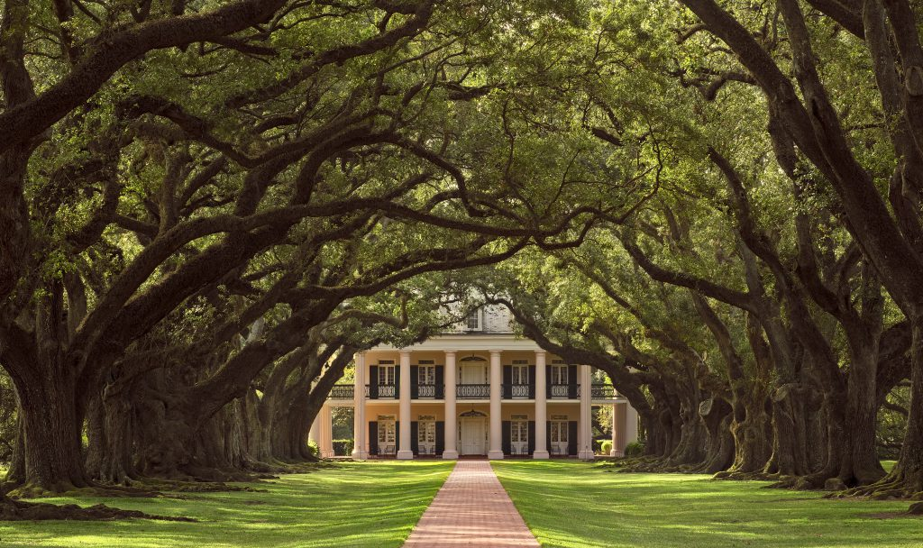 Oak Valley Plantation