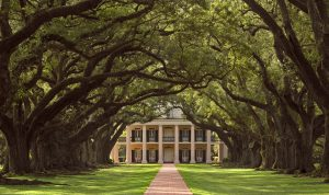 Most Instagrammable Spots in Louisiana