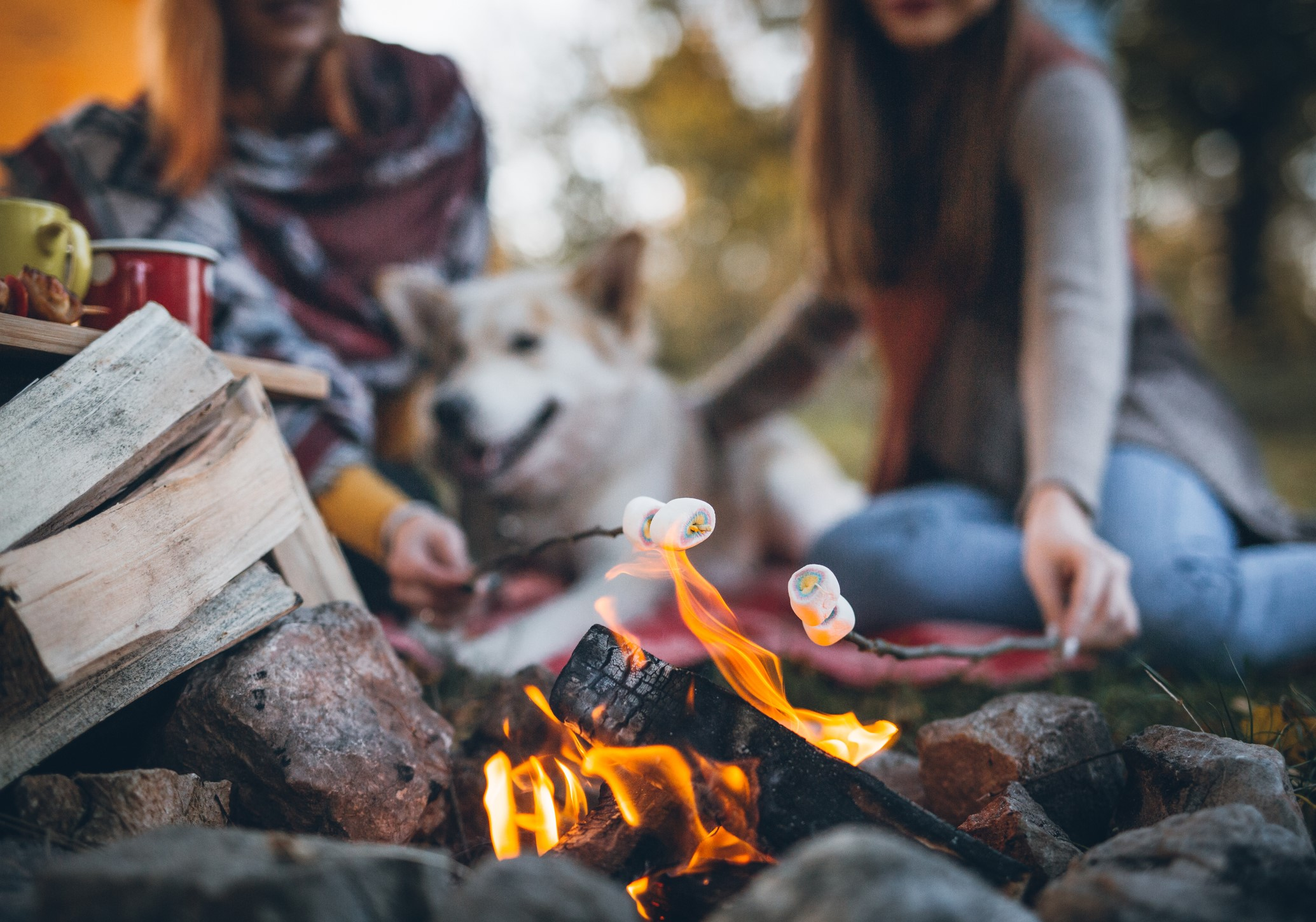 Thanksgiving Campfire Recipes