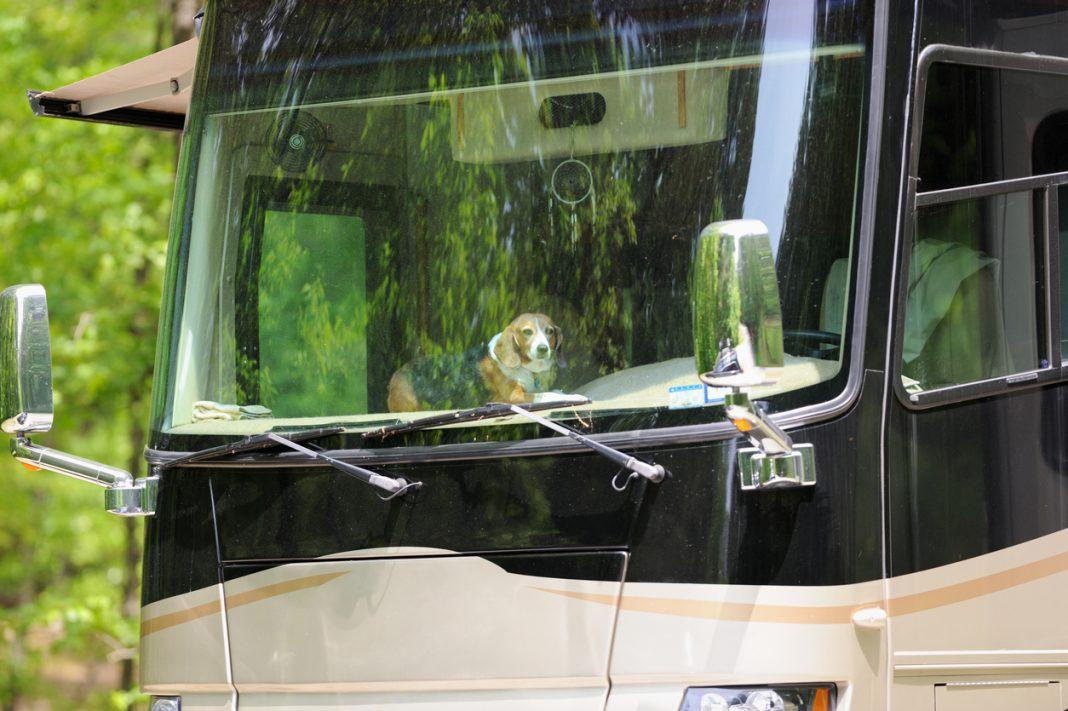 Pet safe RV