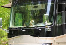 Pet safe RV
